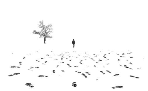 El camino de la soledad (17)